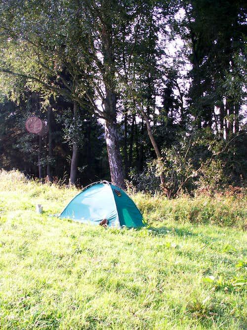 Summer camp...