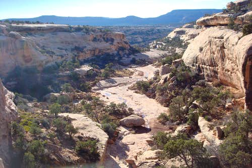 Cheesebox canyon
