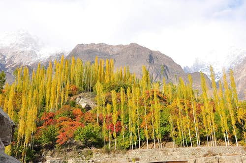Autumn in Hunza