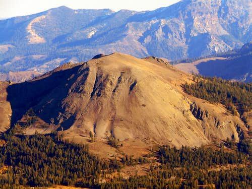 Markleeville Peak from Red Lake Peak