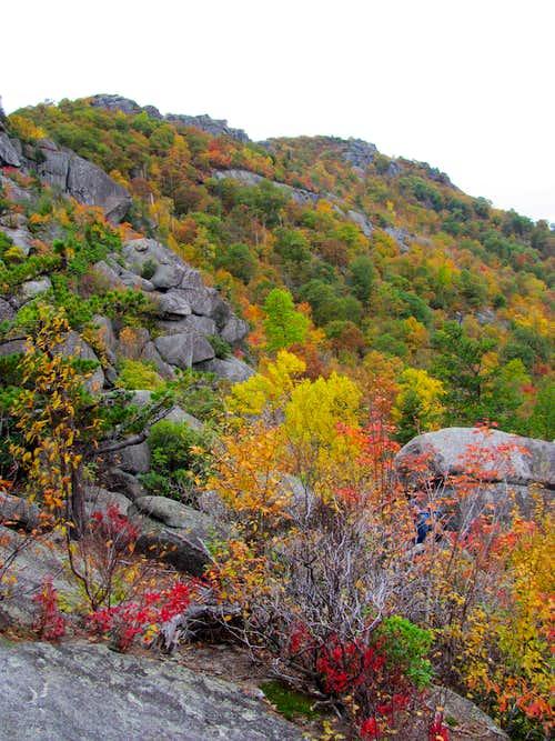 Autumn on Old Rag