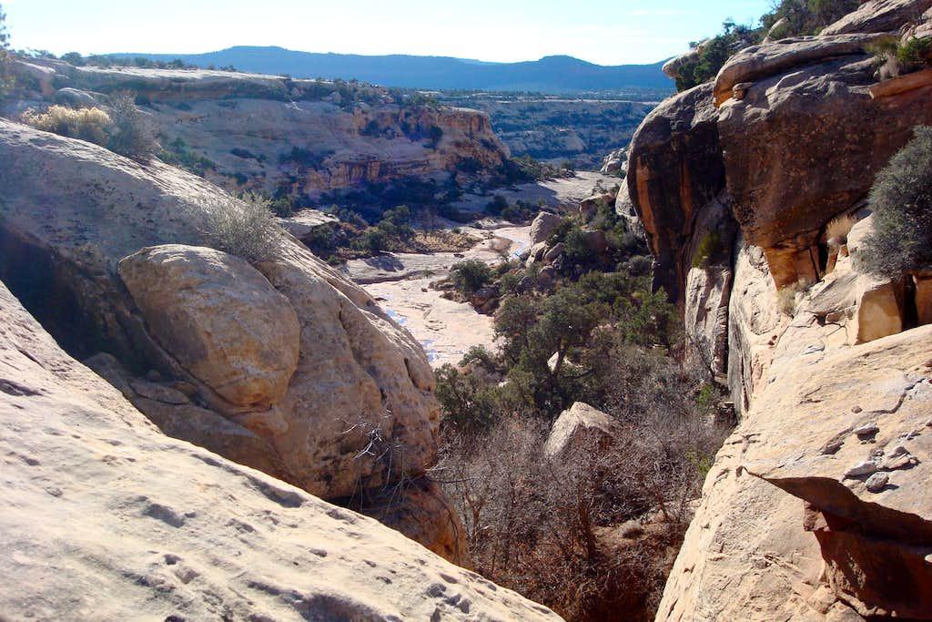 Cheesebox canyon