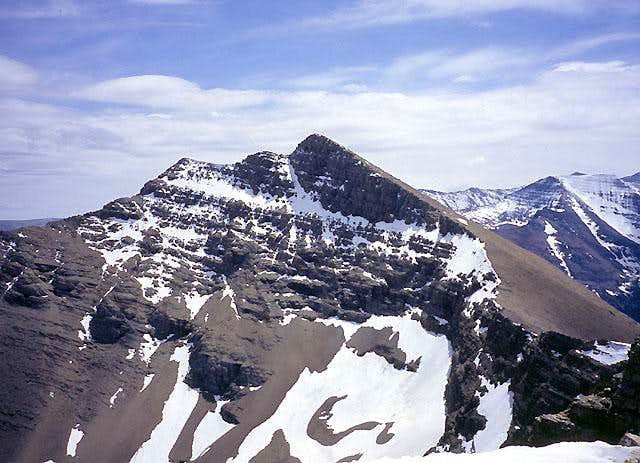 Mount Henkel from the north.