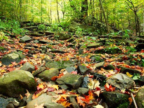 Catskill Trail