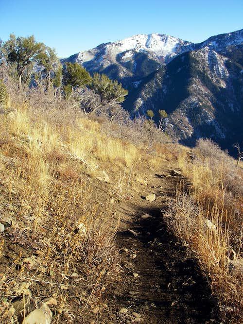 Gobblers Knob from Grandeur Peak