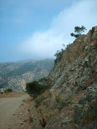 Lone Tree Point