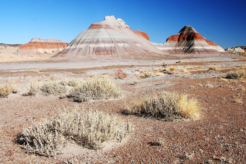 Tepees in Petrified Forest