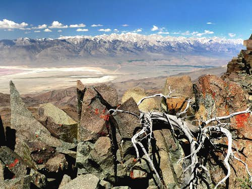 High Sierra from Inyo crest