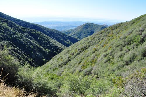 Cold Springs Canyon