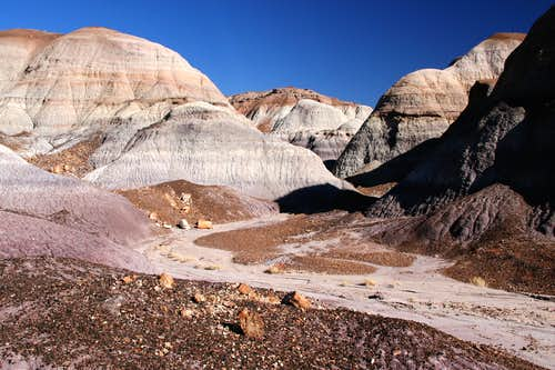 Blue Mesa Trail in Petrified Forest (4 of 4)