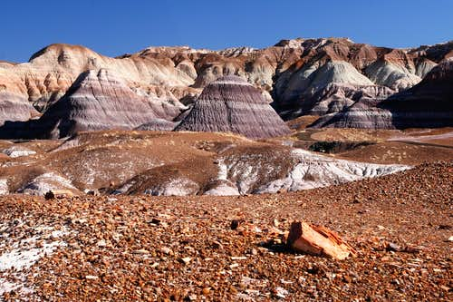 Blue Mesa Trail in Petrified Forest (3 of 4)