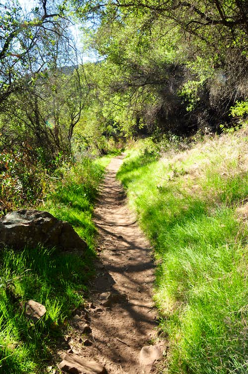 Cold Springs Canyon Trail