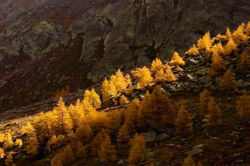 Autumn in Weissmies Group