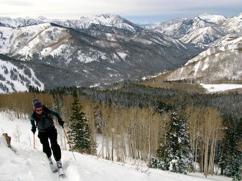 Skinning Above Big Cottonwood Canyon