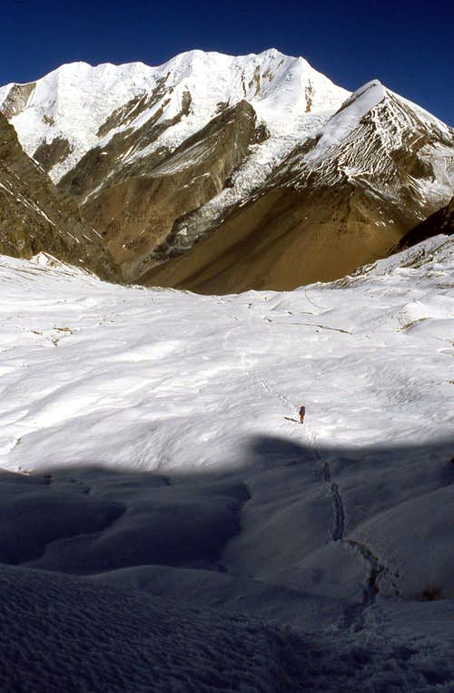 Dhaulagiri Glacier above the BC