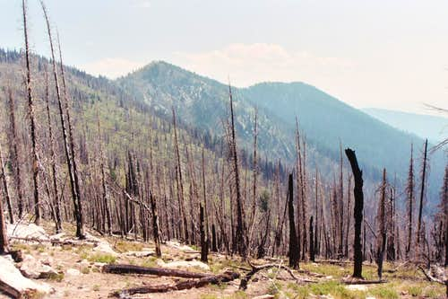 Burned Up Southwest Butte