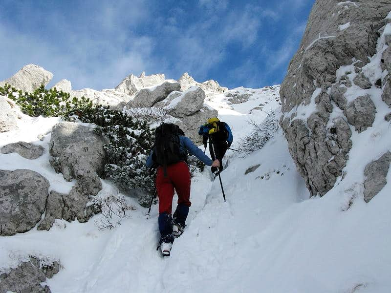 Approaching Snježnik summit