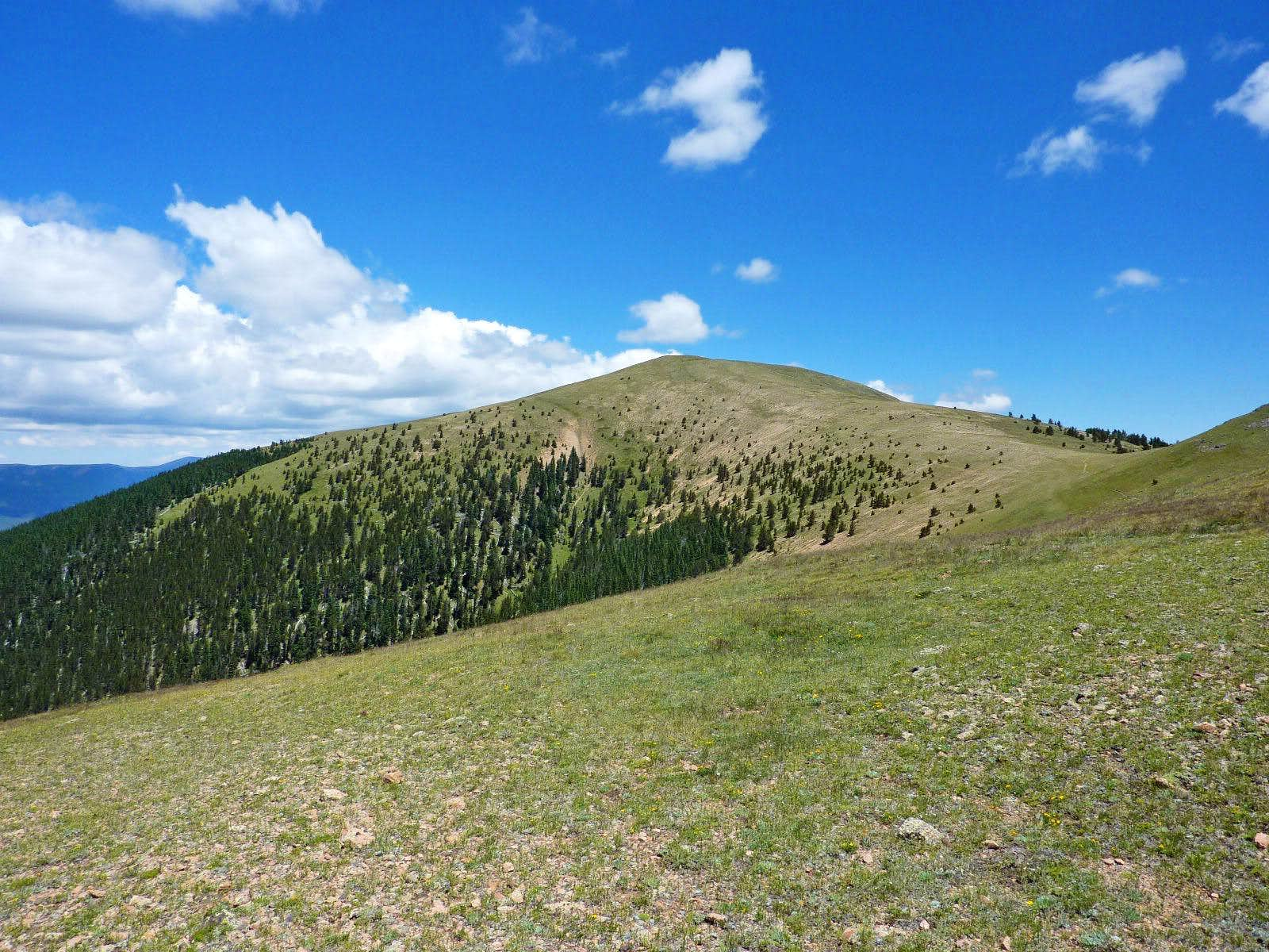 Little Costilla Peak (NM)