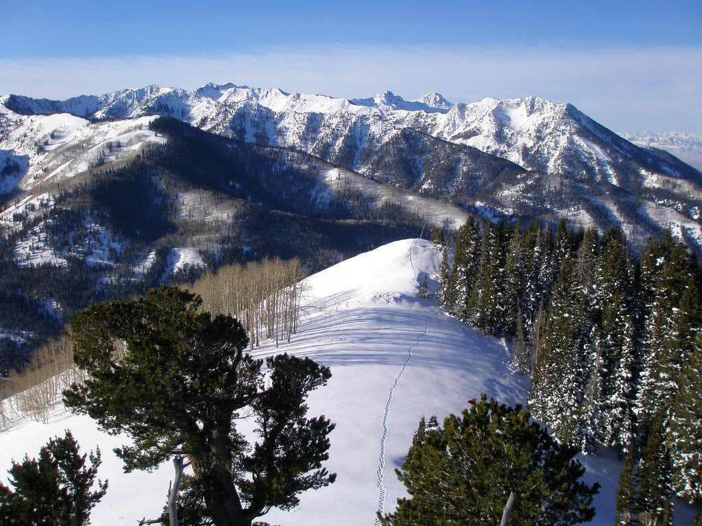 SW ridge of Silver Peak