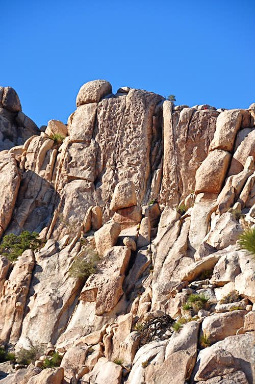 Dairy Queen Wall