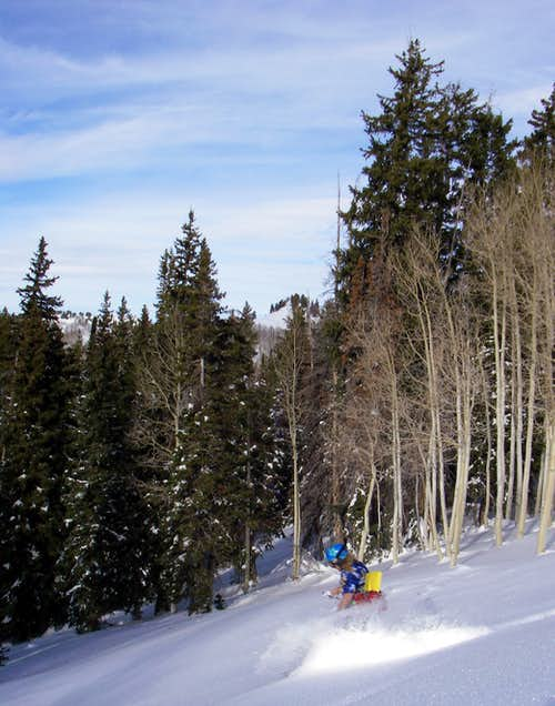 Troy skiing Beartrap Fork