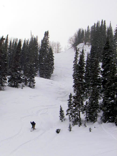 Ron splitboarding down North Willow