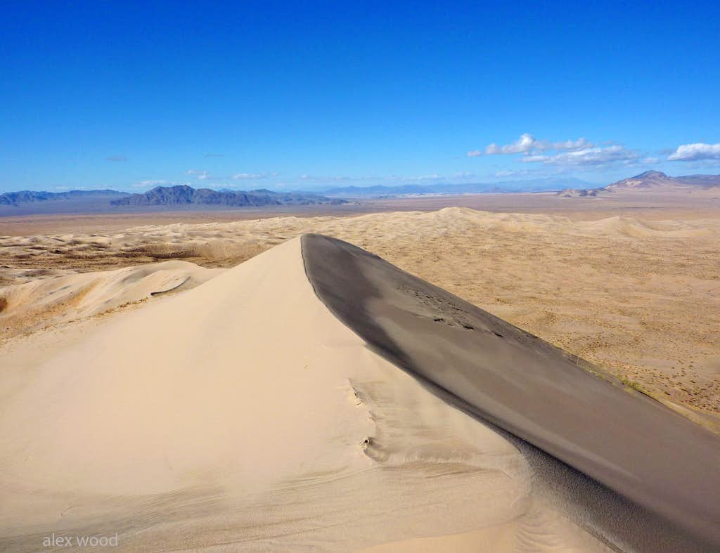 Western View of the Mojave