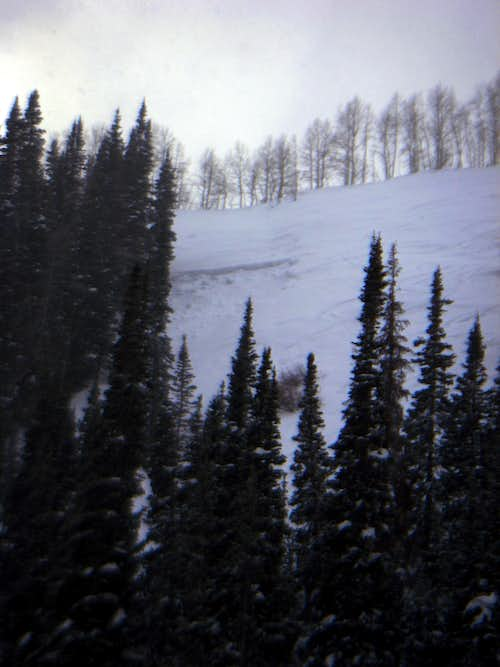 Avalanche in North Willow (Willow Fork)