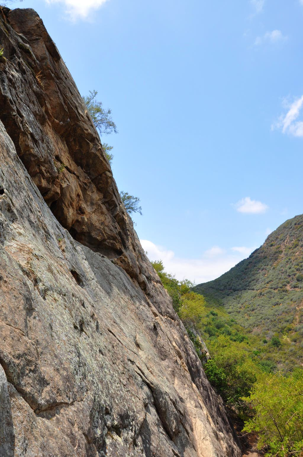 Foothill Crag