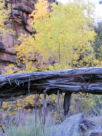 Fall in No Thuroughfare Canyon, Colorado