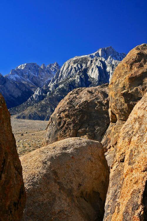 Lone Pine and Rocks