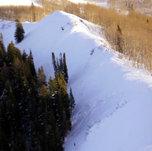 An avalanche on Little Water Peak