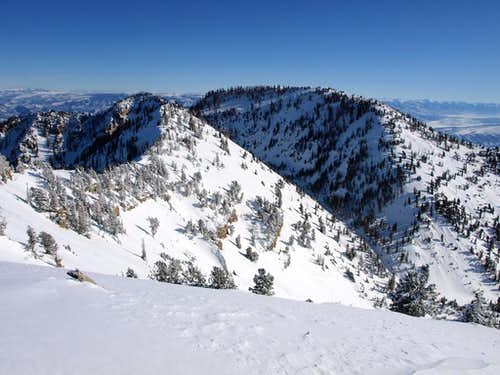 Loafer Mountain from Santaquin Peak