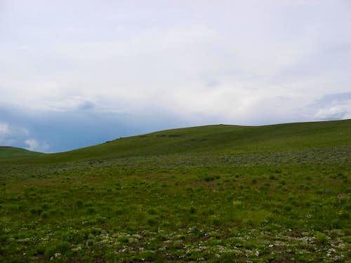 Sheepshead Range HP
