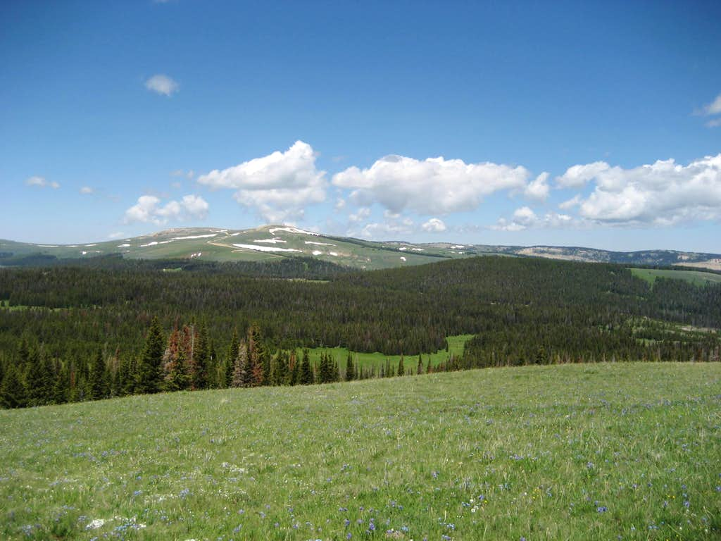 Duncum Mountain