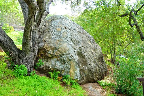The Entrance Boulder to Skofield Park