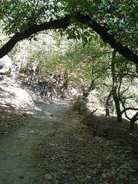 Start of trail in Imlil