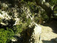 Big Falls Route