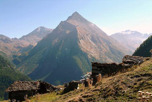 Old Prapremier  Alp