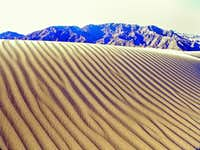 Mesquite Dunes and Tucki Mountain