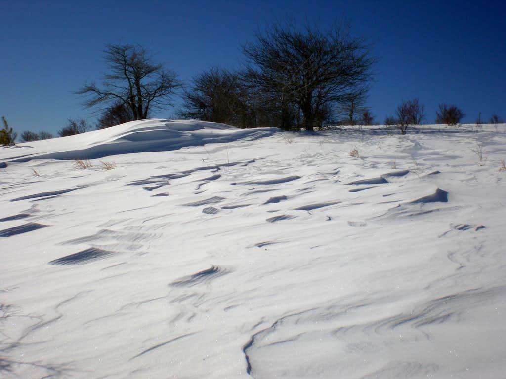 Wind dunes of snow...