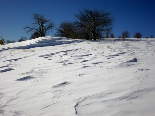 Wind dunes of snow...