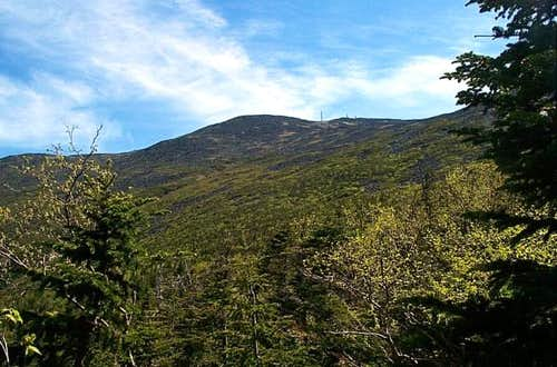View of Mt. Washington from...