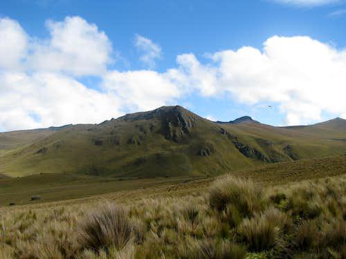 Paramo grass and mountains
