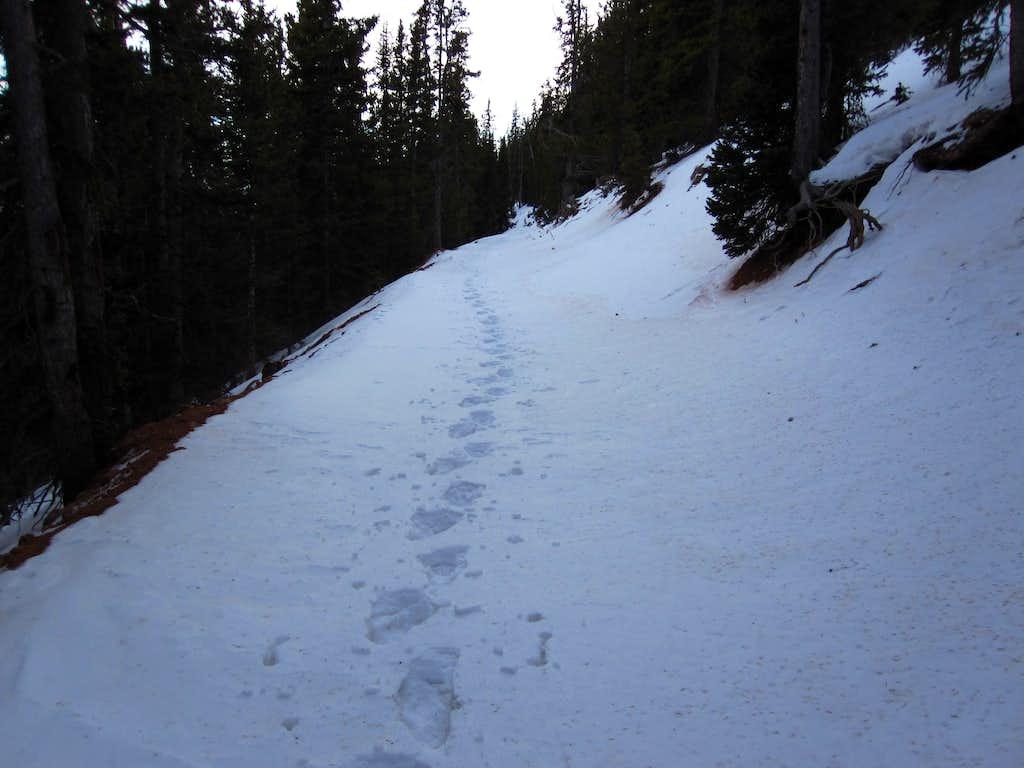 Jan 1, 2010 Snow