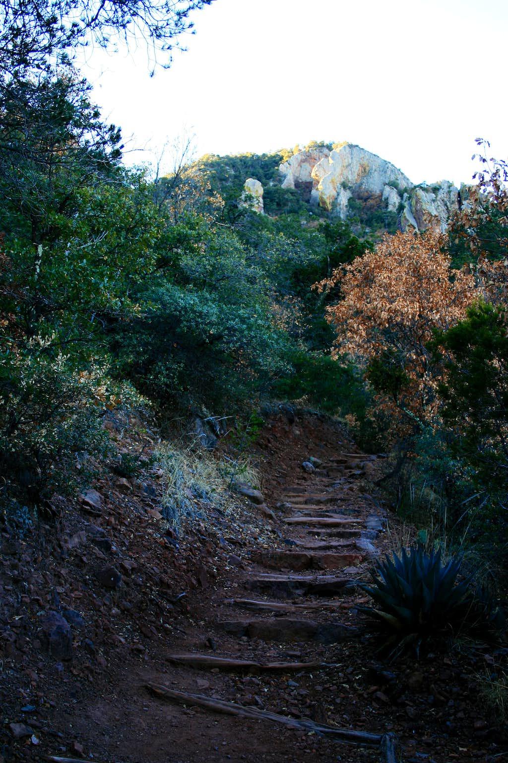 Pinnacles Trail up Emory Peak