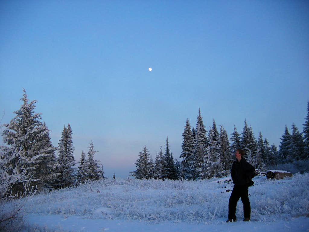 Enjoying the winter solitude