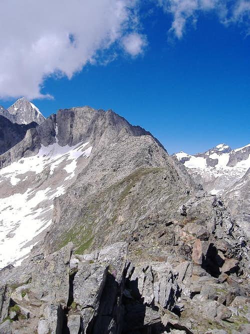 Ridge leading from Sparrhorn to Hochstock