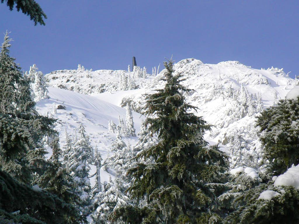 Mt Whymper Summit in Winter