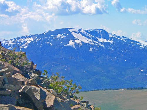 White Mountain, 11,398\' from Mt. Emma northeast slope